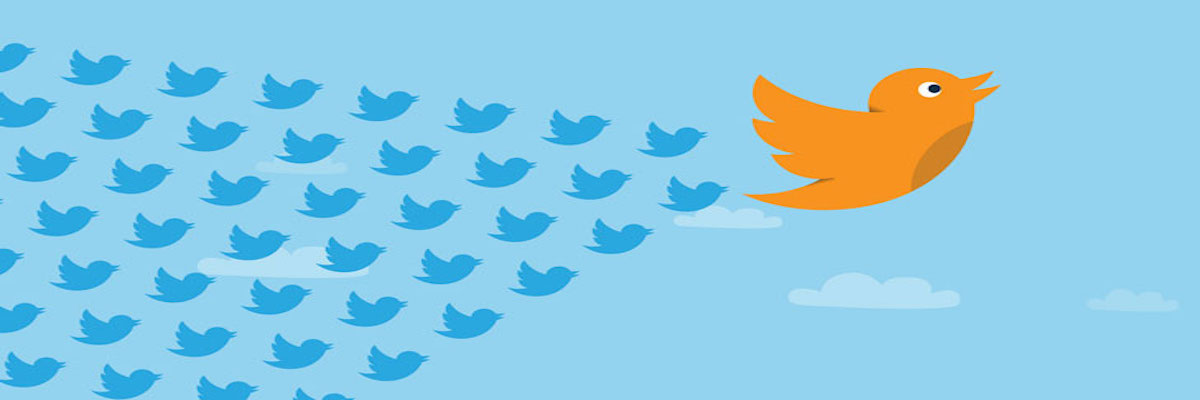 Now You Can #GoLive Right On Twitter